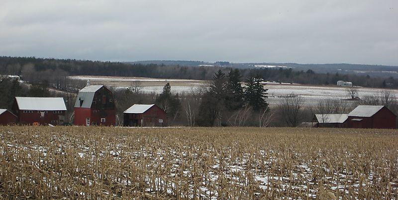 Finger lakes farm