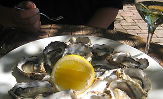Oysters at pegasus bay