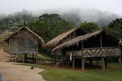 Village homes