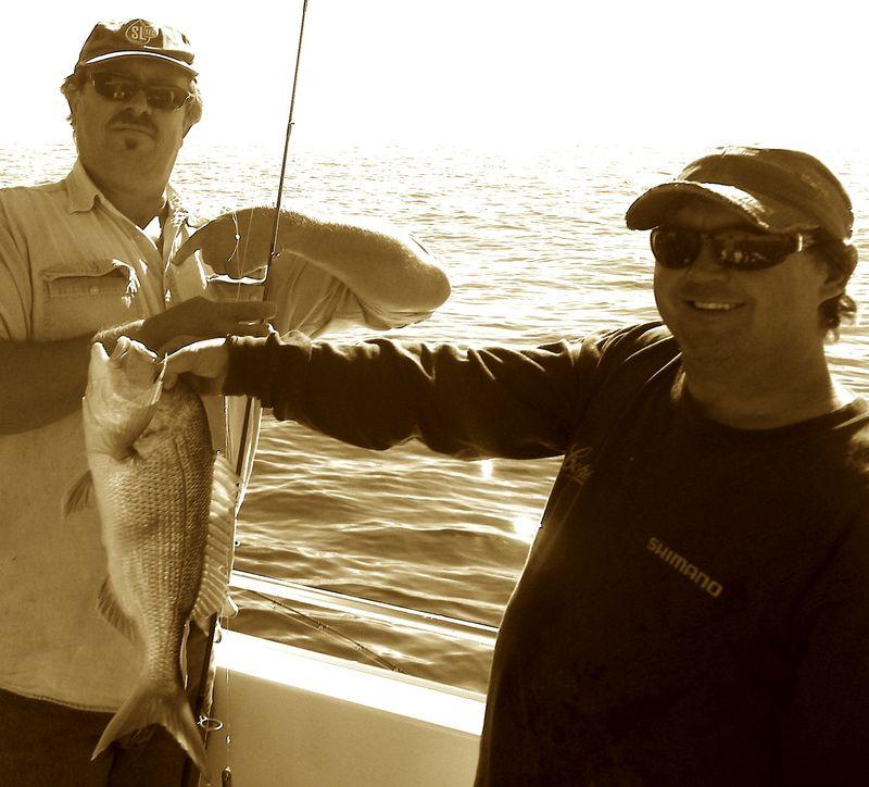 Biting fish