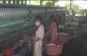 Silk_factory