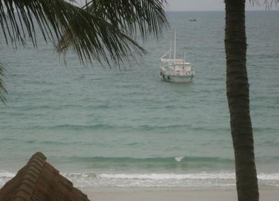 Paradise_fish_boat