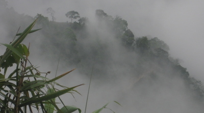 Fog_mountain