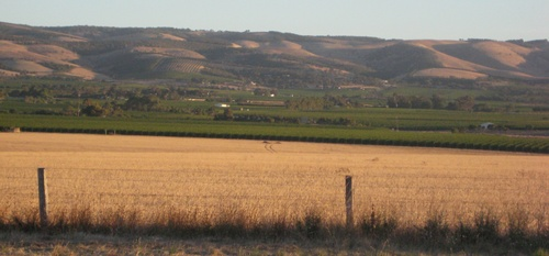 Willunga_hills